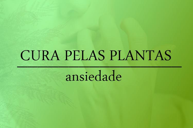 cura-pelas-plantas